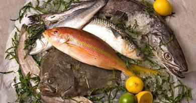 Зошто рибата е здрава и колку треба често да ја јадеме
