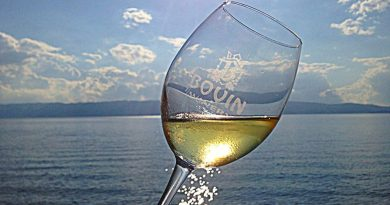 Жените во третата доба од животот кои пијат вино најмалку еднаш неделно имаат побистар ум и подобро помнат