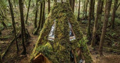 Оваа скриена дрвена куќичка со одличен ентериер е место на кое би ги поминале зимските празници