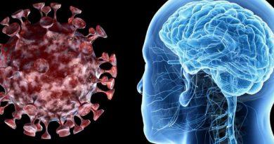 Намирница која го разорува мозокот – тешко е да ја исфрлиме од исхраната, а ја јадеме секој ден