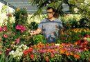 ВИДЕО: Кои садници се садат во лето?