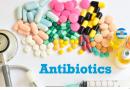 Д-р Стевановиќ: Парацетамол не се пие на 37.2, витаминот Ц може да ги оштети бубрезите