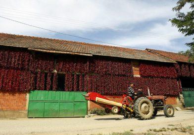 Србија нуди по 10.000 евра за преселба на село, сѐ повеќе луѓе го прифаќаат предизвикот