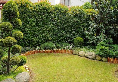 Како вашиот двор да изгледа поголем и поубав?